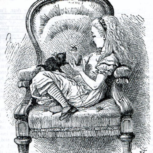 the humor in alice in wonderland by lewis carroll Humor list question what illustration style of the cover page from the novel alice's adventures in wonderland by lewis carroll why was lewis carroll's.