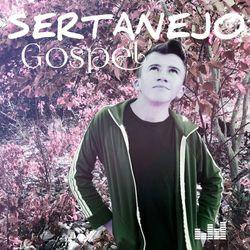 Vários artistas – Sertanejo Gospel 2020 CD Completo