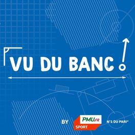 Show cover of Vu du banc - Le podcast du jeu