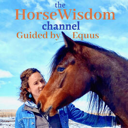 Show cover of the HorseWisdom Channel Guided by Equus