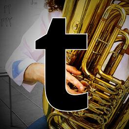 Show cover of tubalernen.de