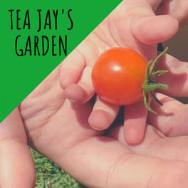 Show cover of Tea Jay's Garden